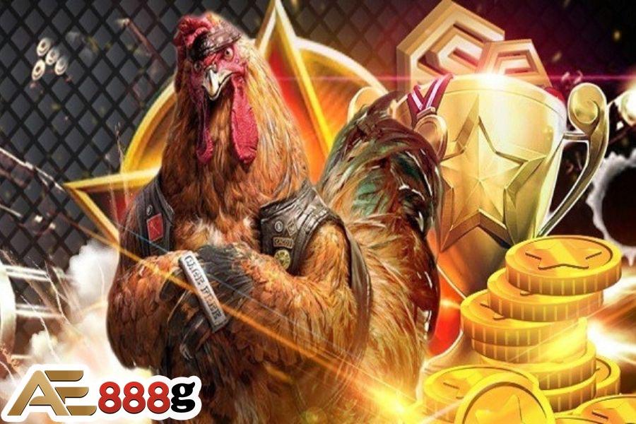 Đá gà online tại nhà cái AE888
